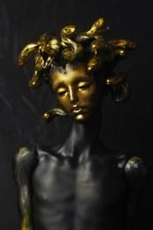 Medusa M. Head