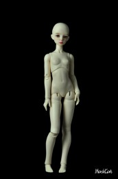 【Maskcat】57cm body (new)