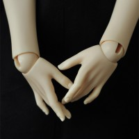 【Maskcat】57cm line hands