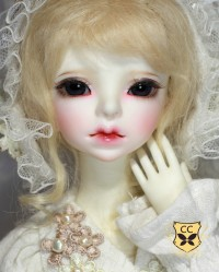 Echo 【Clover Doll】