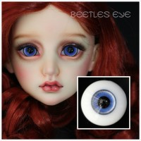 【Beetles】H-26  Glass Eyes