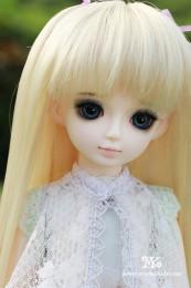 Verdin【Mystic Kids】