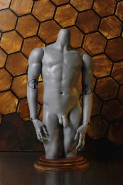 1/3 male body part (preorder)