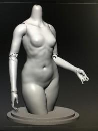 1/3 female body part [1-part torso](preorder)