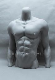 1/3 Male Body Stand/ Torso Kapa