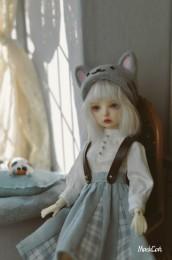 【Maskcat】26cm Line Feline