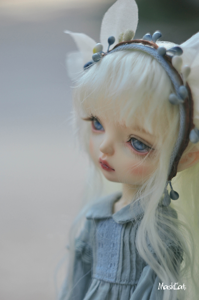 【Maskcat Doll】New Dolls: 26cm line Clady & 1/4 Bellis