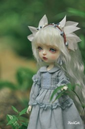 【Maskcat】26cm Line Gladys