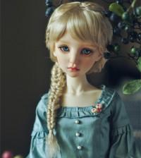 【Maskcat】57cm Line Nerine